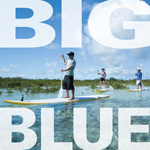 big blue scuba eco-tours kayaks providenciales turks caicos islands