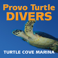 provo turtle divers oldest scuba operation providenciales turks caicos islands