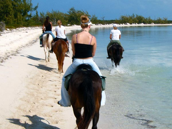 A photograph of horseback riding with Provo Ponies on Long Bay Beach, Providenciales (Provo), Turks and Caicos Islands.