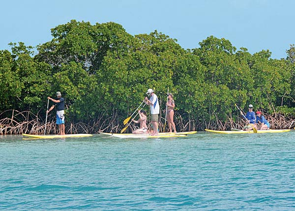 A photograph of Stand Up Paddleboarding (SUP) around Providenciales and the Turks and Caicos Islands