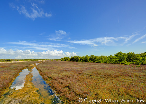 A photograph of South Creek, Salt Cay, Turks and Caicos Islands, British West Indies