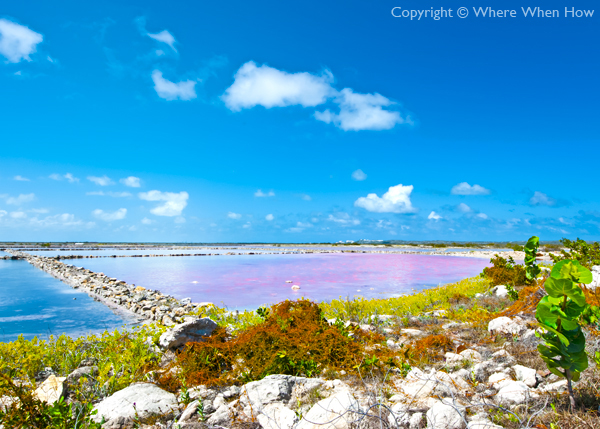 A photograph of the Saltpans on South Caicos, Turks and Caicos Islands, British West Indies