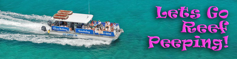 snorkeling snuba scuba diving sailing beach water sports turks caicos islands