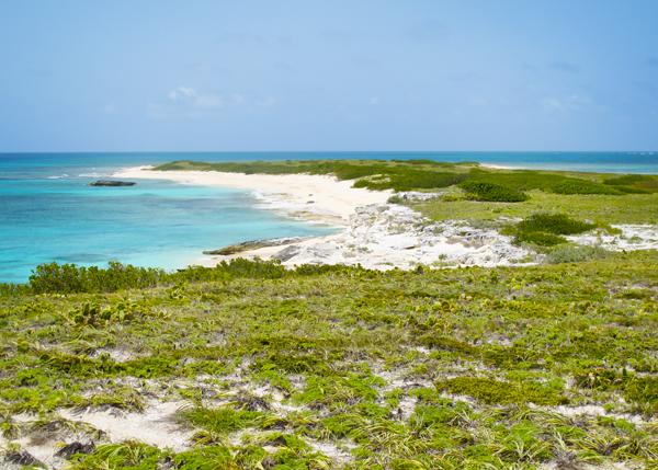 A photograph of Big Sand Cay, Turks and Caicos Islands, British West Indies